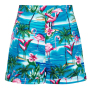 CL-SS172102A-ayana-flamingo-island-shorts-p4042-back