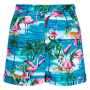 CL-SS172102A-ayana-flamingo-island-shorts-p4042-front