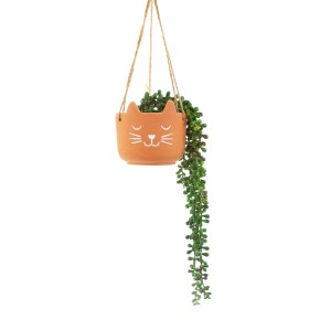 Cat's Whiskers Terracotta Hanging Planter 3