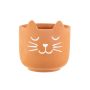 Mini Cat's Whiskers Terracotta Planter 2