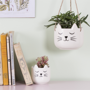 Cat's Whiskers Hanging Planter 2