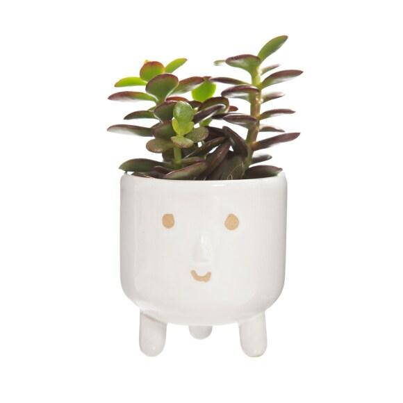 Smiley Leggy Planter 2